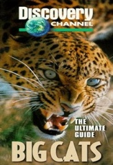 Ultimate Guide: Big Cats Image Cover
