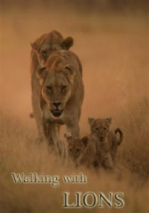 Walking With Lions Image Cover