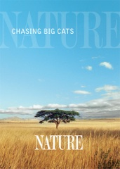 Chasing Big Cats Image Cover