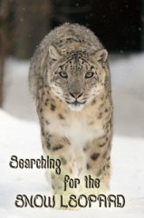 Silent Roar: Searching for the Snow Leopard Image Cover