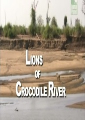 Lions of Crocodile River Image Cover