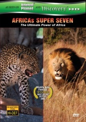 Africa's Super 7 Image Cover