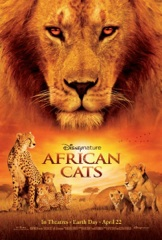 African Cats Image Cover