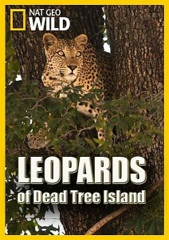 Leopards of Dead Tree Island Image Cover