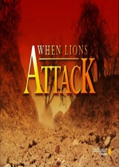 When Lions Attack Image Cover