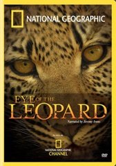 Eye of the Leopard Image Cover