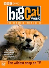 Big Cat Diary Image Cover