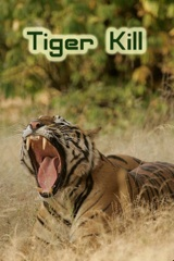 Tiger Kill Image Cover