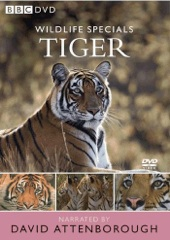 Wildlife Specials: Tiger - Spy in the Jungle Image Cover