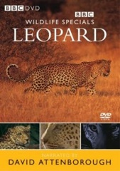 Wildlife Specials: Leopard - The Agent of Darkness Image Cover