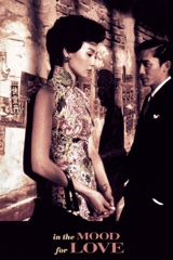 In the Mood for Love Image Cover