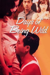 Days of Being Wild Image Cover