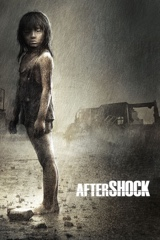 Aftershock Image Cover
