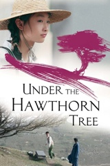 Under the Hawthorn Tree Image Cover