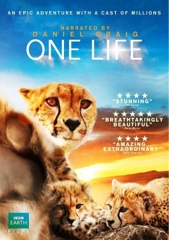 One Life Image Cover