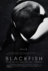 Blackfish Image Cover
