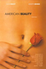American Beauty Image Cover