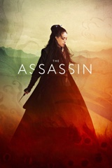 The Assassin Image Cover