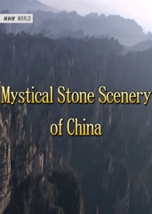 Mystical Stone Scenery of China Image Cover