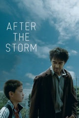 After the Storm Image Cover