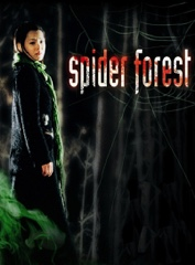 Spider Forest Image Cover